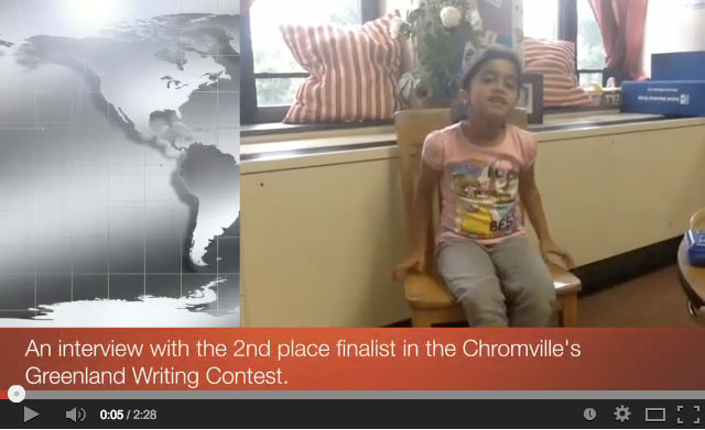 2nd-place-finalist